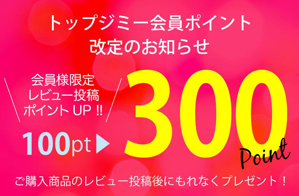 ご購入商品のレビューを投稿後にもれなく300ポイントプレゼント!